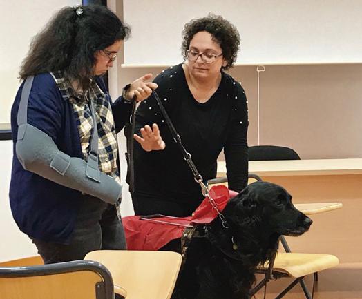 jornadas-gimbernat-integracion-discapacidad