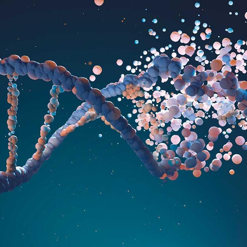 DNA-GA