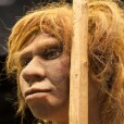 Neandertales-GA
