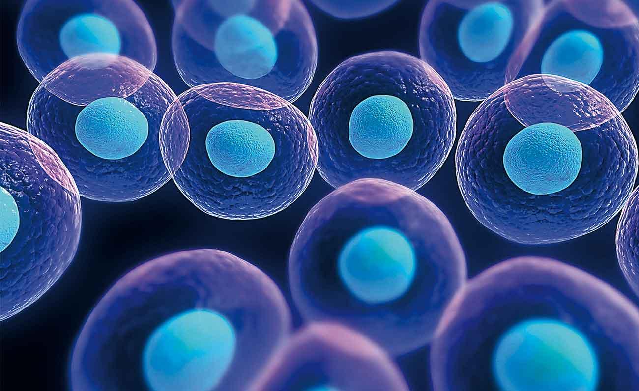 ctem-cell