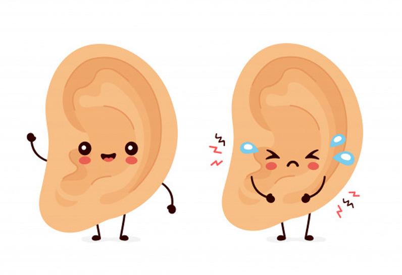 oido-habla
